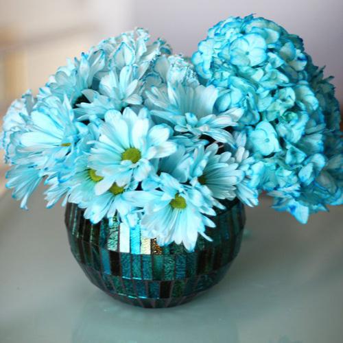 bi quyet nhuom mau cho hoa cuc trang cuc nhanh - 10