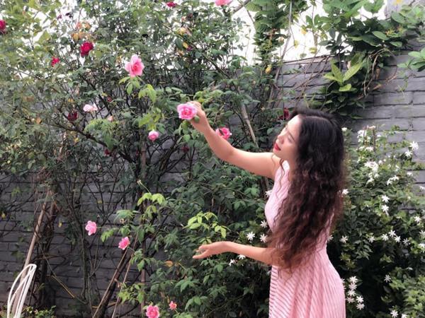 Xiêu lòng trước sân thượng rực rỡ hoa hồng của bà mẹ ở Hà Nội - 1