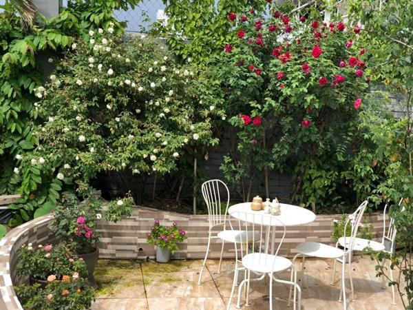 Xiêu lòng trước sân thượng rực rỡ hoa hồng của bà mẹ ở Hà Nội - 2