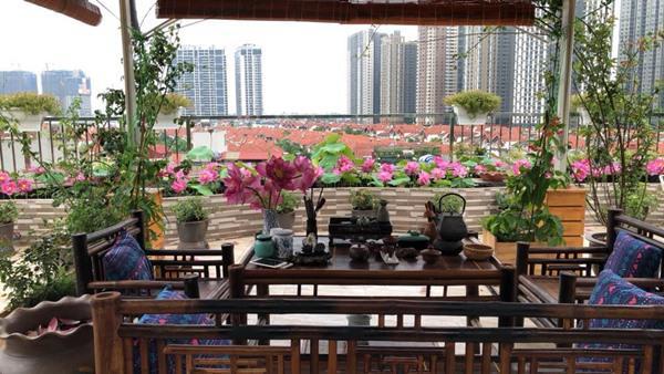Xiêu lòng trước sân thượng rực rỡ hoa hồng của bà mẹ ở Hà Nội - 9