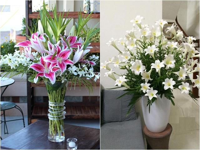 5 loại hoa đắt tiền chứa kịch độc chết người nhà nào cũng chưng Tết, phải bỏ ngay!