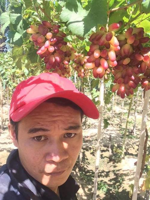 Nho rừng tự nhiên ra chi chít quả khiến amp;#34;vạn người mêamp;#34; ở Ninh Thuận - 7