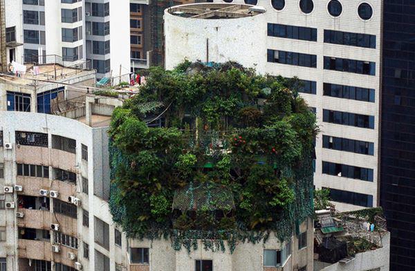 Những căn nhà siêu dị trên thế giới, căn số 5 nằm ở Việt Nam - 4