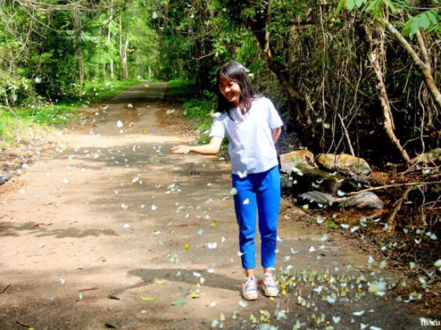 Khám phá 5 địa điểm sống ảo không thể bỏ qua khi du lịch Đồng Nai