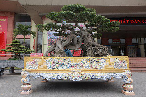 Sanh cổ amp;#34;ngọa hổ tàng longamp;#34; giá hơn 32 tỷ đồng của đại gia Phú Thọ - 1
