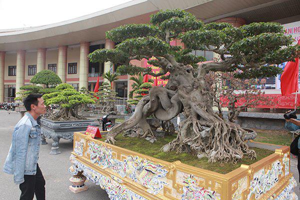 Sanh cổ amp;#34;ngọa hổ tàng longamp;#34; giá hơn 32 tỷ đồng của đại gia Phú Thọ - 13