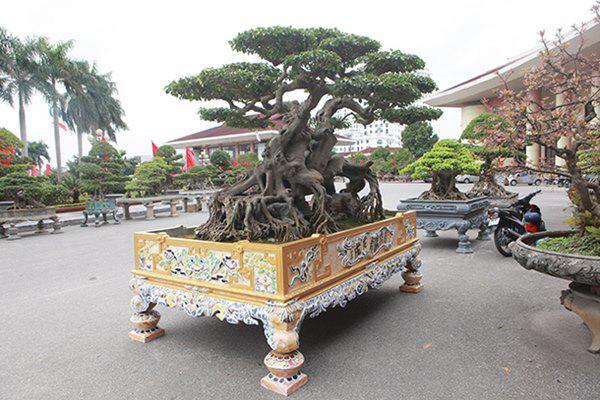 Sanh cổ amp;#34;ngọa hổ tàng longamp;#34; giá hơn 32 tỷ đồng của đại gia Phú Thọ - 14