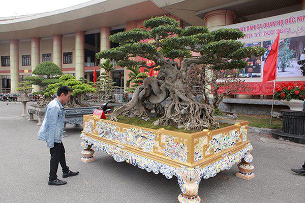 Sanh cổ amp;#34;ngọa hổ tàng longamp;#34; giá hơn 32 tỷ đồng của đại gia Phú Thọ - 3