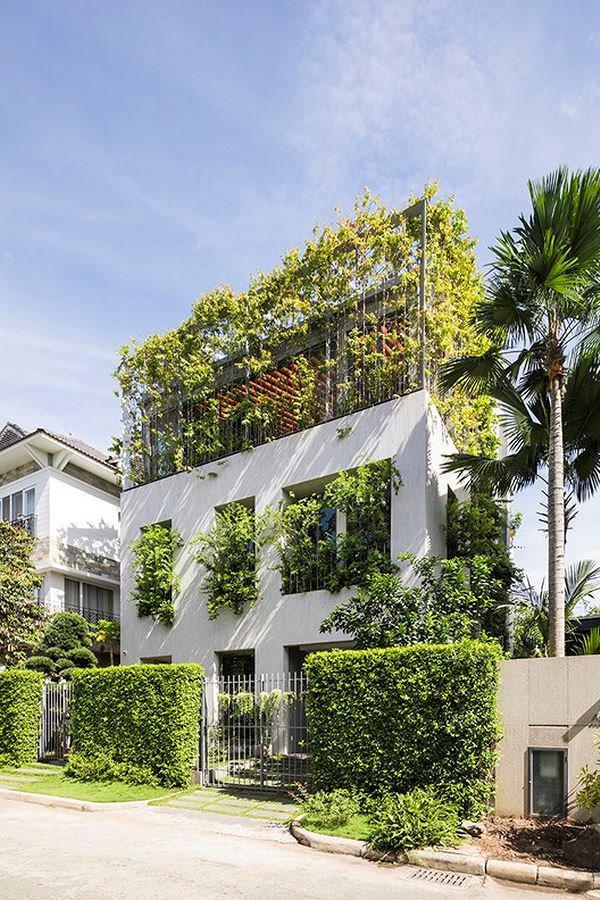 ho bien ca rung cay xanh vao trong nha pho 3 1551685521 453 width600height900 Hô biến cả rừng cây xanh vào trong nhà phố