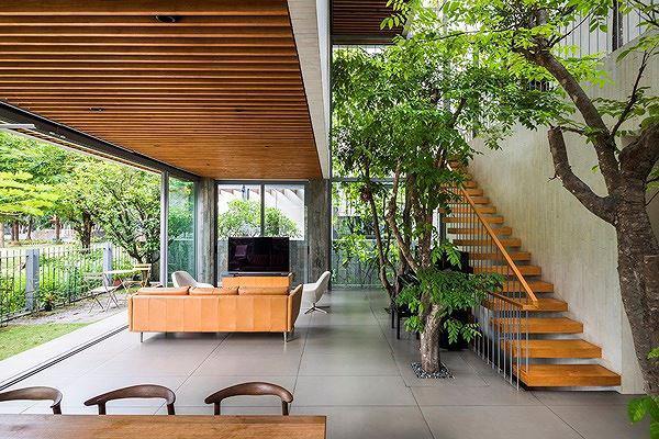 ho bien ca rung cay xanh vao trong nha pho 4 1551685521 435 width600height400 Hô biến cả rừng cây xanh vào trong nhà phố