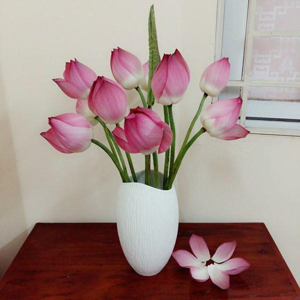 5 loai hoa dep bay phong khach khong som thi muon, kieu gi cung giau - 1