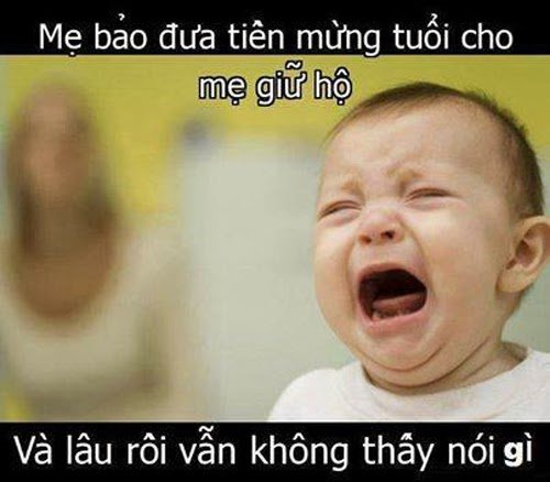 cuoi bo voi loat anh che hai huoc tong ket tet canh ty 2020 - 4