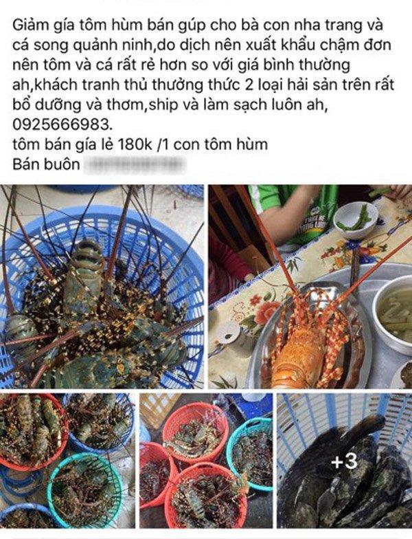 "3 loi ich tuyet voi khi ""giai cuu"" tom hum nhung tuan thu dieu nay de khong tu hai minh - 1"