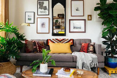 Lựa chọn cây phong thủy bài trí trong nhà, xua tà khí, mang lại may mắn cho gia chủ - 3
