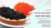 Top 5 món ăn đắt đỏ, sang chảnh nhất Việt Nam