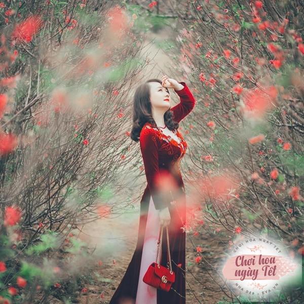 """Mua """"cây bụi"""" trời Tây về cắm Tết, mẹ Hà Nội tiết lộ cách chơi không bị mất thẩm mỹ - 1"""