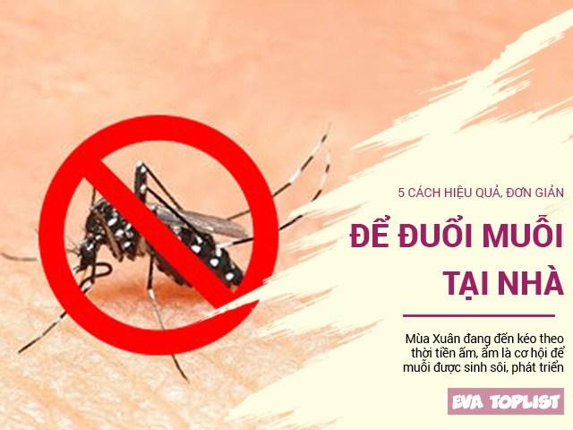 Xuân đang sang, trời ẩm dần, các mẹ cần nằm lòng 5 mẹo đuổi muỗi cực hiệu quả này
