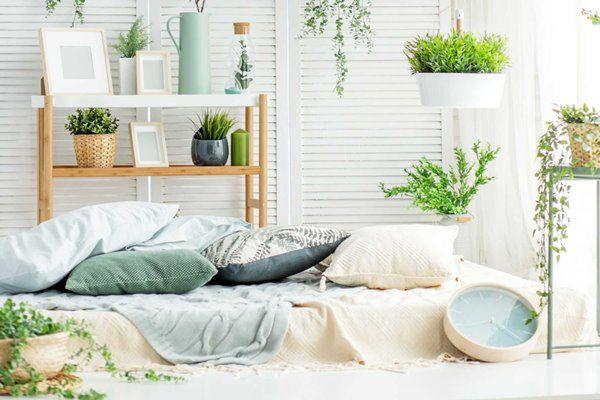 Cách làm không gian trong nhà có mùi ấm cúng, Tết này nhất định phải thử - 5