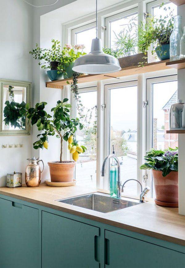 Cách khử mùi bếp nhà chung cư, Tết này tự tin xào nấu không ngại mùi - 5