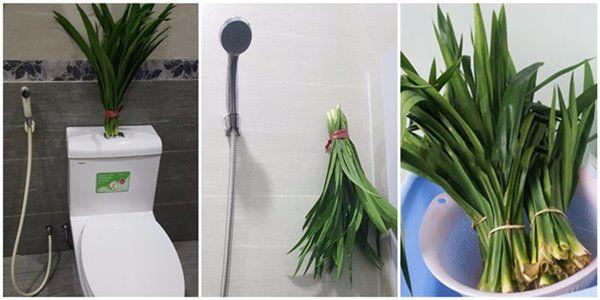 Dọn lại nhà sau Tết nhớ áp dụng 6 mẹo không tốn kém, nhà vệ sinh vẫn thơm cả tuần - 4