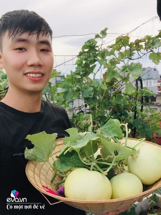 Giữa lòng thủ đô, thanh niên làm vườn ao chuồng, thu về cả tạ cá, cà chua, su hào...đủ loại - 3