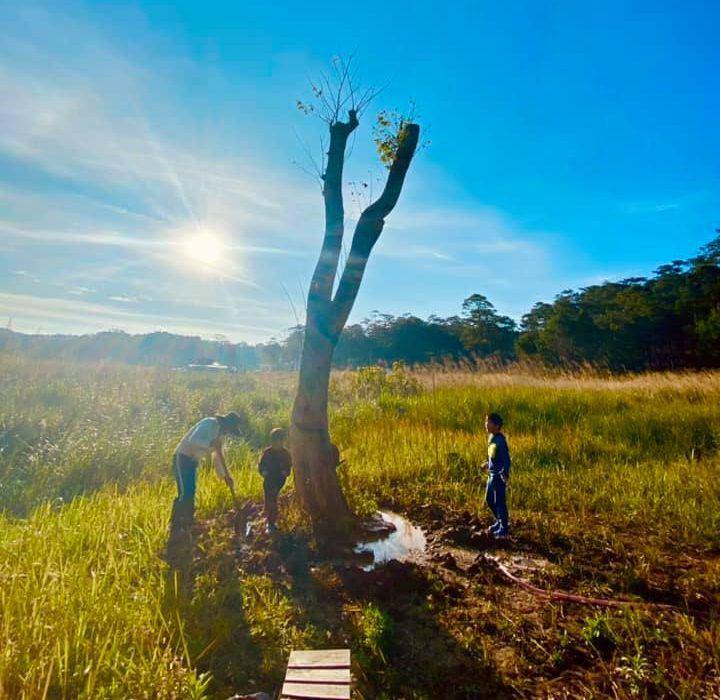 Lý Hải Minh Hà đăng ảnh cho 4 con tập cuốc đất, trồng cây - 5