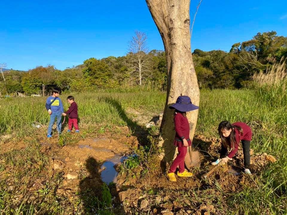Lý Hải Minh Hà đăng ảnh cho 4 con tập cuốc đất, trồng cây - 1