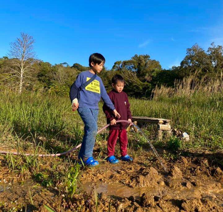 Lý Hải Minh Hà đăng ảnh cho 4 con tập cuốc đất, trồng cây - 4