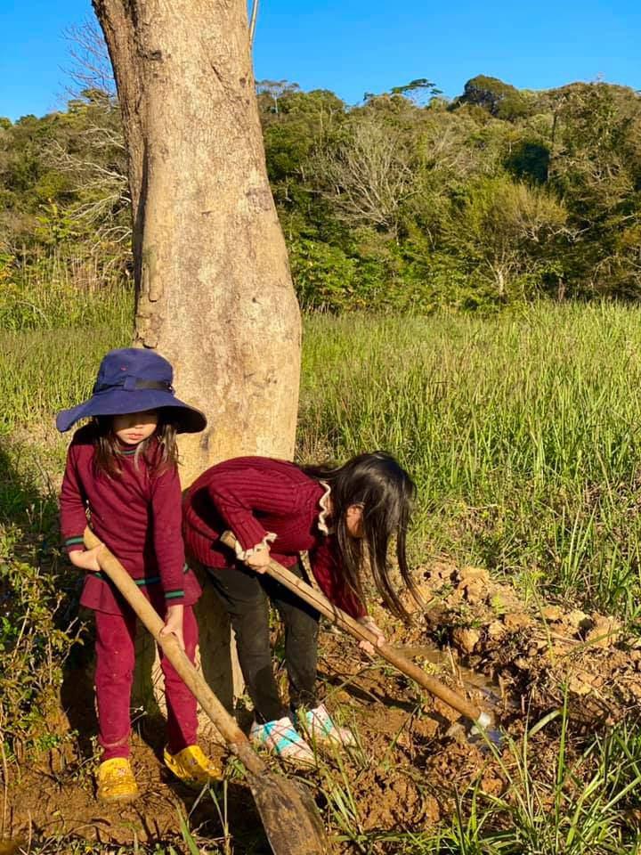 Lý Hải Minh Hà đăng ảnh cho 4 con tập cuốc đất, trồng cây - 3