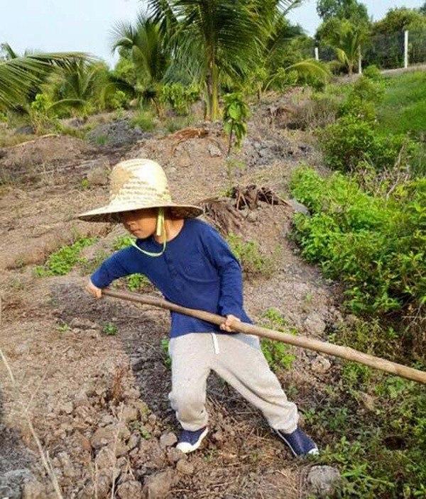 Lý Hải Minh Hà đăng ảnh cho 4 con tập cuốc đất, trồng cây - 6