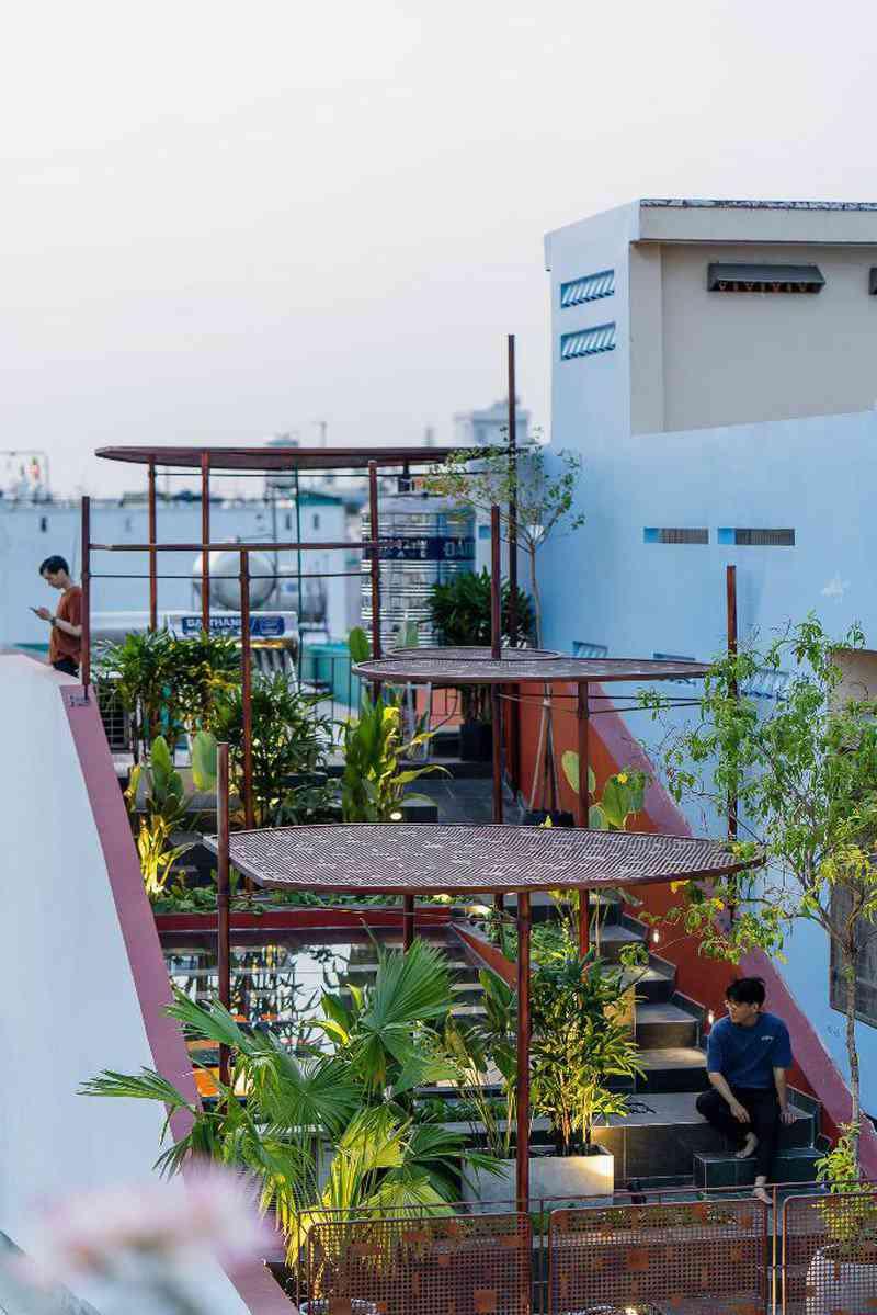 Ấn tượng với ngôi nhà có vườn rau trên mái dốc - 11