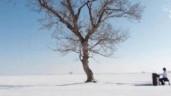 Nhạc sĩ mù 9 tuổi thể hiện tài năng piano giữa cánh đồng tuyết tuyệt đẹp