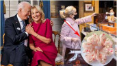 Phu nhân tổng thống Joe Biden tạo bão với chun cột tóc quen thuộc ai cũng có thể sở hữu
