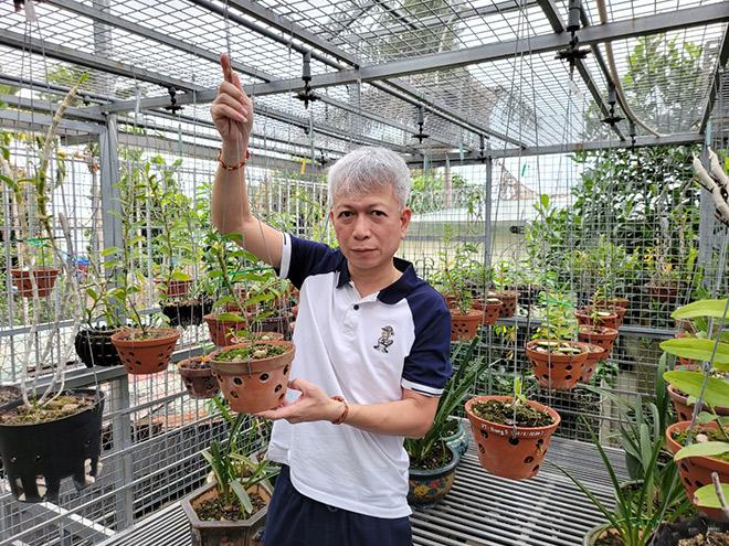Nguyễn Hữu Hiệp và cơ duyên với hoa phong lan - 1