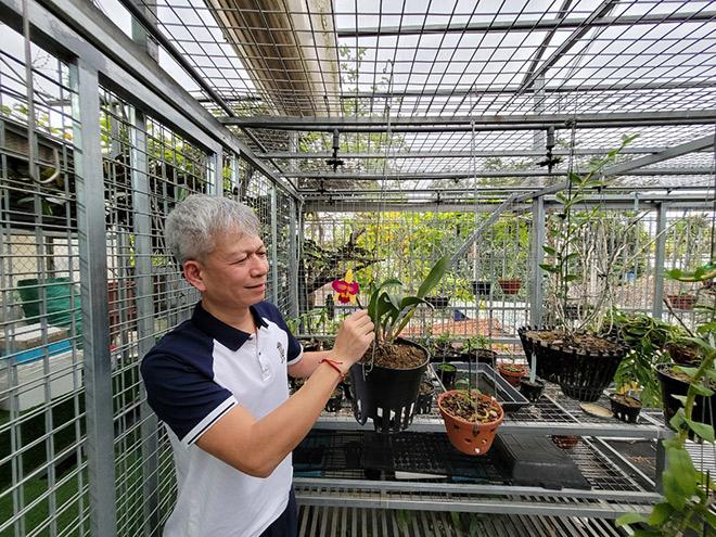 Nguyễn Hữu Hiệp và cơ duyên với hoa phong lan - 4