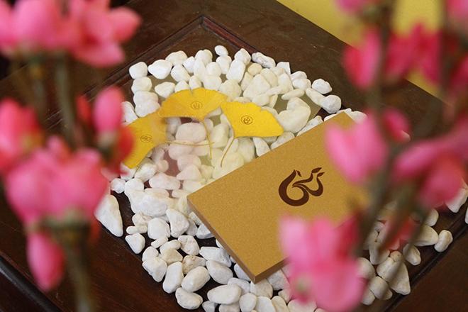 Bit Phong Thủy - Cái duyên đam mê với văn hóa tâm linh của chuyên gia Vũ Thị Diệp Hương - 6