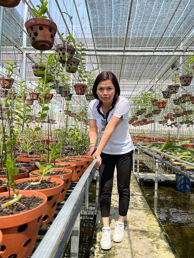 Từ bỏ kinh doanh, nghệ nhân Thủy Royal rẽ hướng chinh phục hoa lan - 1