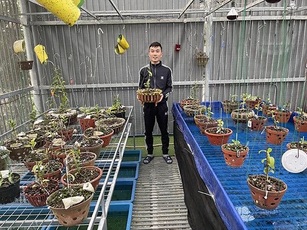 Tạ Quang Bộ chia sẻ kinh nghiệm trồng và chăm sóc lan rừng cho người mới bắt đầu chơi - 1