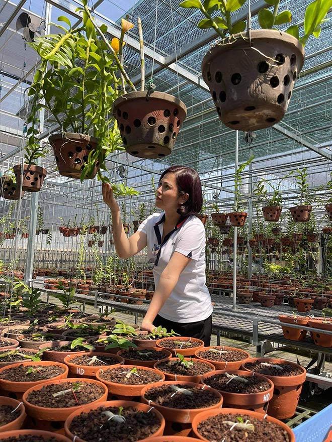Từ bỏ kinh doanh, nghệ nhân Thủy Royal rẽ hướng chinh phục hoa lan - 4