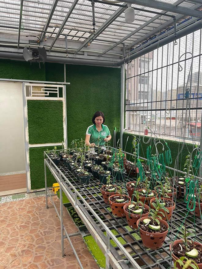 Từ bỏ kinh doanh, nghệ nhân Thủy Royal rẽ hướng chinh phục hoa lan - 3