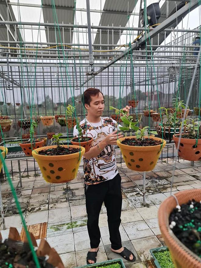 Ông chủ Trương Cường và chặng đường xây dựng vườn lan tại Bắc Ninh - 1