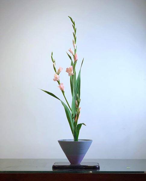 cach cam hoa lay on don gian dep long lay - 8