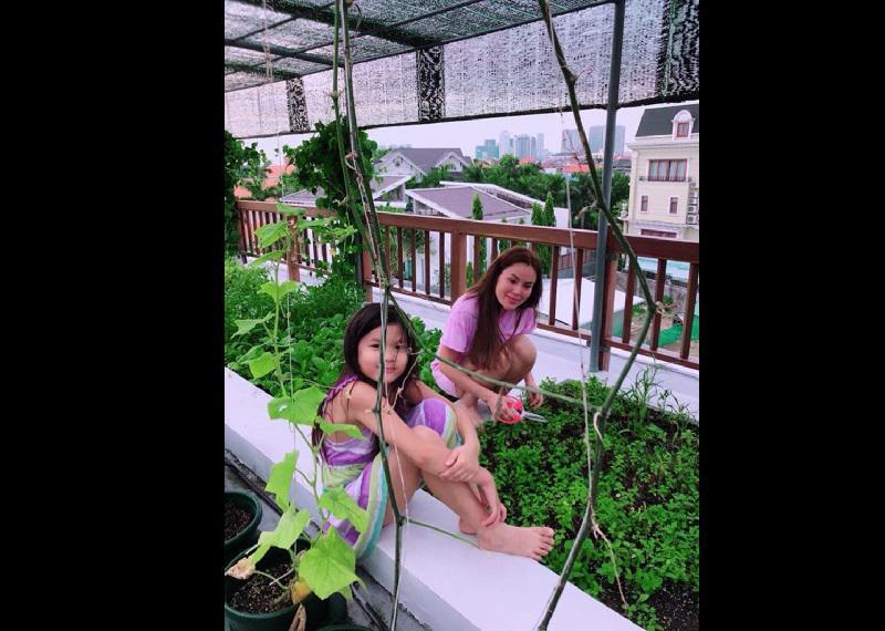 3 cô con gái hào hứng giúp mẹ trồng rau, chăm cây quả trong nhà.