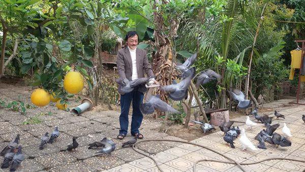 Nghệ sĩ Giang Còi về quê ở nhà vườn 10.000m2 ngập rau trái, sáng ra hái mang đi cho - Ảnh 7.