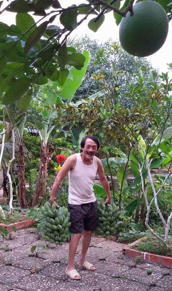 Nghệ sĩ Giang Còi về quê ở nhà vườn 10.000m2 ngập rau trái, sáng ra hái mang đi cho - Ảnh 1.