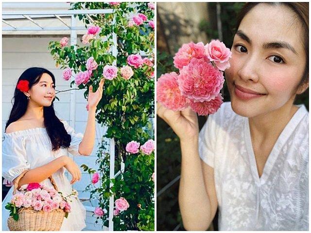 Những vườn hồng trăm triệu trong nhà sao: Hà Tăng, Quyền Linh, Khánh Thi... ai đỉnh hơn?