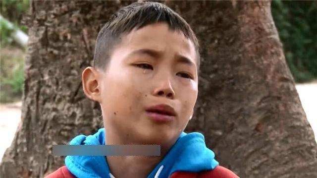 Bé trai 13 tuổi làm amp;#34;chaamp;#34; của 5 đứa trẻ, bật khóc dưới gốc cây sau nhà vì tủi thân - 1