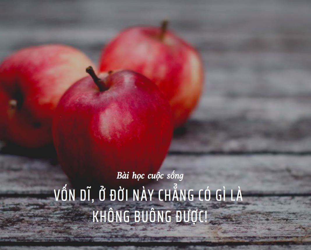Giữ khư khư quả táo, khi sức cùng lực kiệt con khỉ mới biết sự thật thứ cầm trong tay - 1