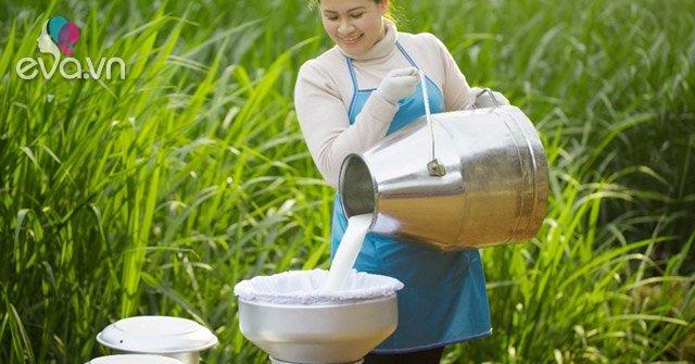 Sữa Cô Gái Hà Lan an toàn hơn chuẩn 11 lần: Chuẩn mực kiểm soát từ khâu nguyên liệu