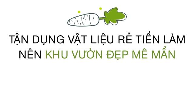 Bố Sài Gòn biến sân thượng thành vườn rau, ăn không hết phải nài nỉ hàng xóm sang lấy về - 14